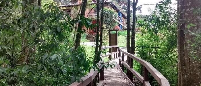 Foto de uma ponte em madeira em uma trilha arborizada