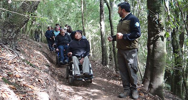Foto de um grupo de pessoas cadeirantes fazendo uma trilha